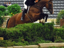 Lone Star Jumped To The Top Of Hunter Derby Finals With Hunt Tosh