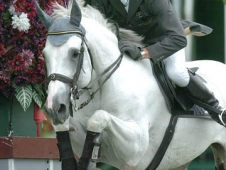 Champion du Lys and Ludger Beerbaum