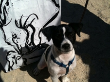 Elliott's Dog