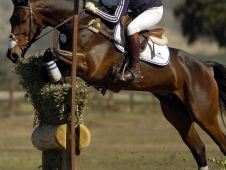 "Jennie Brannigan And Cambalda Jump Into <a href=""http://www.chronofhorse.com/article/brannigan-brings-her-game-galway-downs-cci-cross-country"">The Galway CCI*** Lead</a>"