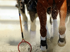 PRO Eventers Play Polocrosse At Jersey Fresh