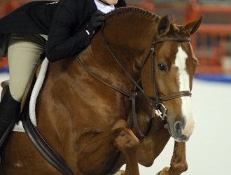 2010 Pennsylvania National Junior Hunters