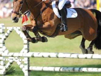 2010 Red Hills International Horse Trials Show Jumping