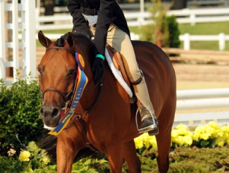 2010 USEF Pony Finals Friday