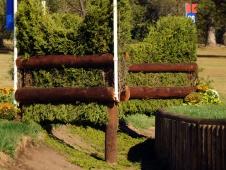 Fence 26AB—The Scalloped Brush
