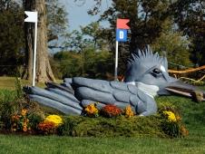 Fence 5ABCD—The Salato Wildlife Center