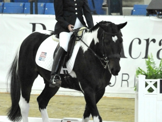 2010 WEG Para Dressage US Team