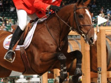 "Mario Deslauriers and Urico Stay On Top In <a href=""http://www.chronofhorse.com/article/us-rocks"">Round 1.</a>"