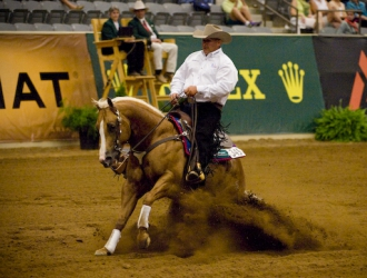 2010 WEG Team Reining Day 2