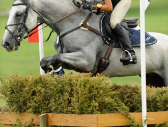 2011 Adequan/FEI North American Junior And Young Rider Championships: Cross-country