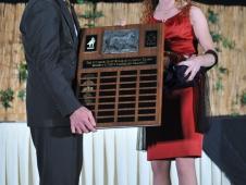 The Sunshine Sport Horse Association Trophy