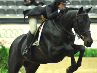 2011 Alltech National Horse Show Amateur And Junior Hunters
