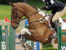 Ryann Quigley and Ardfield Rover