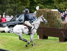 Oliver Townend and Neo Du Breuil