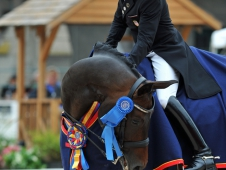 Steffen Peters and Weltino's Magic