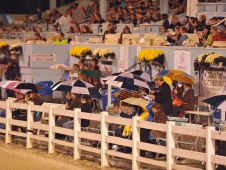 Spectators Brave The Rain