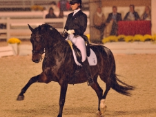 "Adrienne Lyle And Wizard Win <a href=""http://www.chronofhorse.com/article/lyle-lights-night-devon"">Grand Prix Freestyle At Dressage At Devon</a>"
