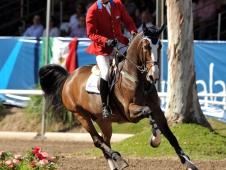Jose Larocca and Royal Power