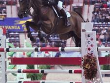 Rodrigo Pessoa and Let's Fly