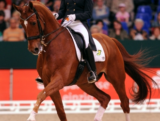 2011 Reem Acra FEI Dressage World Cup Final Grand Prix