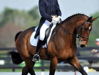 2011 The Fork Dressage