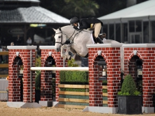 "Castle Rock And Louise Serio Win <a href=""http://www.chronofhorse.com/article/castle-rock-earns-royal-win"">The WCHR Hunter Classic Spectacular</a>"