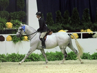 2011 WIHS Equitation Classic Hunter Phase