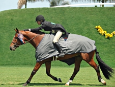 "Taken and Kelley Farmer claimed the <a href=""http://www.chronofhorse.com/article/taken-takes-lead-50000-ushja-international-hunter-derby-wellington"">Wellington Hunter Derby.</a>"