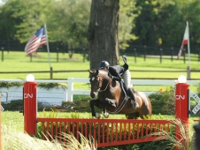 Contemporary and Tammy Provost