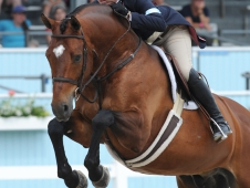"Tori Colvin Can't Be Beaten At <a href=""http://www.chronofhorse.com/article/colvin-does-nothing-win-devon"">Devon</a>"