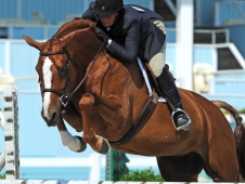 "Rapunzel Lives A <a href=""http://www.chronofhorse.com/article/rapunzel-has-fairytale-devon"">Fairytale Life At Devon</a>"