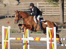 """James Alliston And Tivoli Jump To <a href=""""https://www.chronofhorse.com/article/alliston-does-it-again-galway-downs-cci"""">Galway Downs CCI*** Win</a>"""
