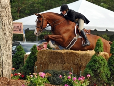 "Kelley Farmer and Red Sky topped the <a href=""http://www.chronofhorse.com/article/red-sky-lights-night-keswick"">Keswick Hunter Derby.</a>"