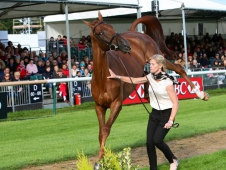 Sinead Halpin and Manoir de Carneville