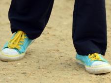 Swedish Kicks