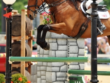 William Fox-Pitt and Parklane Hawk