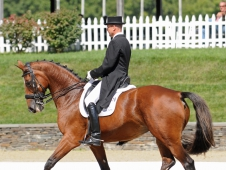 "Lars Petersen and Mariett Win <a href=""http://www.chronofhorse.com/article/petersen-completes-nearly-perfect-weekend-saugerties-cdi-w"">Saugerties CDI-W Grand Prix Special</a>"