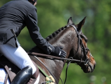 "Phillip Dutton Congratulated Mystery Whisper On Another CIC*** Win <a href=""http://www.chronofhorse.com/article/mystery-whisper-makes-good-fork-cic"">At The Fork</a>"