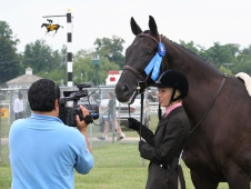 Totally Thoroughbred Horse Show Attracts Ex-Racers To Pimlico Race Course