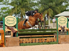 "Dedication and Scott Stewart lead the way in the <a href=""http://www.chronofhorse.com/article/dedication-ponies-round-1-50000-ushja-international-hunter-derby"">Wellington Hunter Derby.</a>"