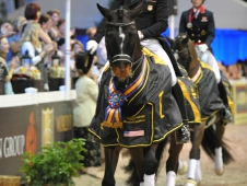 "Steffen Peters Makes It Two In A Row At <a href=""https://www.chronofhorse.com/article/peters-pushes-limits-win-world-dressage-masters"">World Dressage Masters</a>"