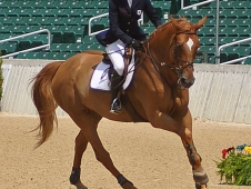 Cantering Into The Medals