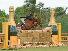 "Miss Lucy tops the <a href=""http://www.chronofhorse.com/article/miss-lucy-shines-derby-day"">USHJA Hunter Derby at WEF.</a>"