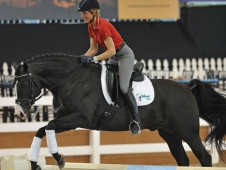 "Ingrid Klimke Demonstrates Jumping For Dressage Horses <a href=""http://www.chronofhorse.com/article/think-outside-box-day-2-global-dressage-forum-north-america""<a> At The Global Dressage Forum North America</a>"