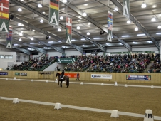 International Eventing Forum Crowds