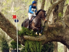 "Phillip Dutton and Mighty Nice <a href=""http://www.chronofhorse.com/article/dutton-does-it-again-red-hills-cic""> Capture The Red HIlls CIC***.</a>"