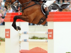 William Fox-Pitt and Seacookie TSF