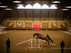 Schooling At Ecole Nationale d'Equitation Le Cadre Noir-Saumur