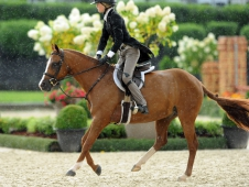 "Canterbrook Prince Charming and Hana Bieling battled rain to win at <a href=""https://www.chronofhorse.com/article/bieling-s-prince-came-back-usef-pony-finals"">Pony Finals.</a>"