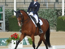 2014 Adequan/FEI NAJYRC Dressage Individual Championships